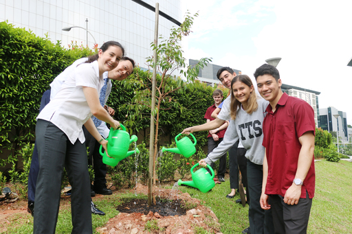 Green Wave Tree Planting