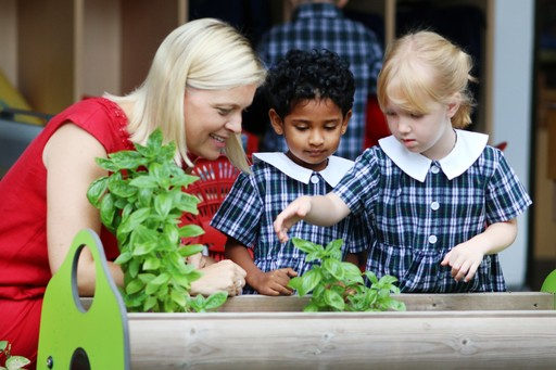 Q&A with Tanglin's Head of Nursery
