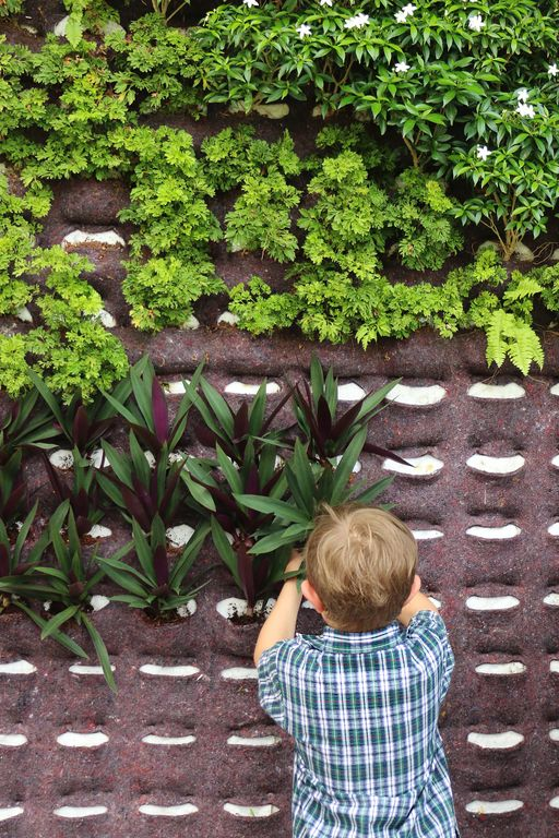 Creating Green Spaces at Tanglin